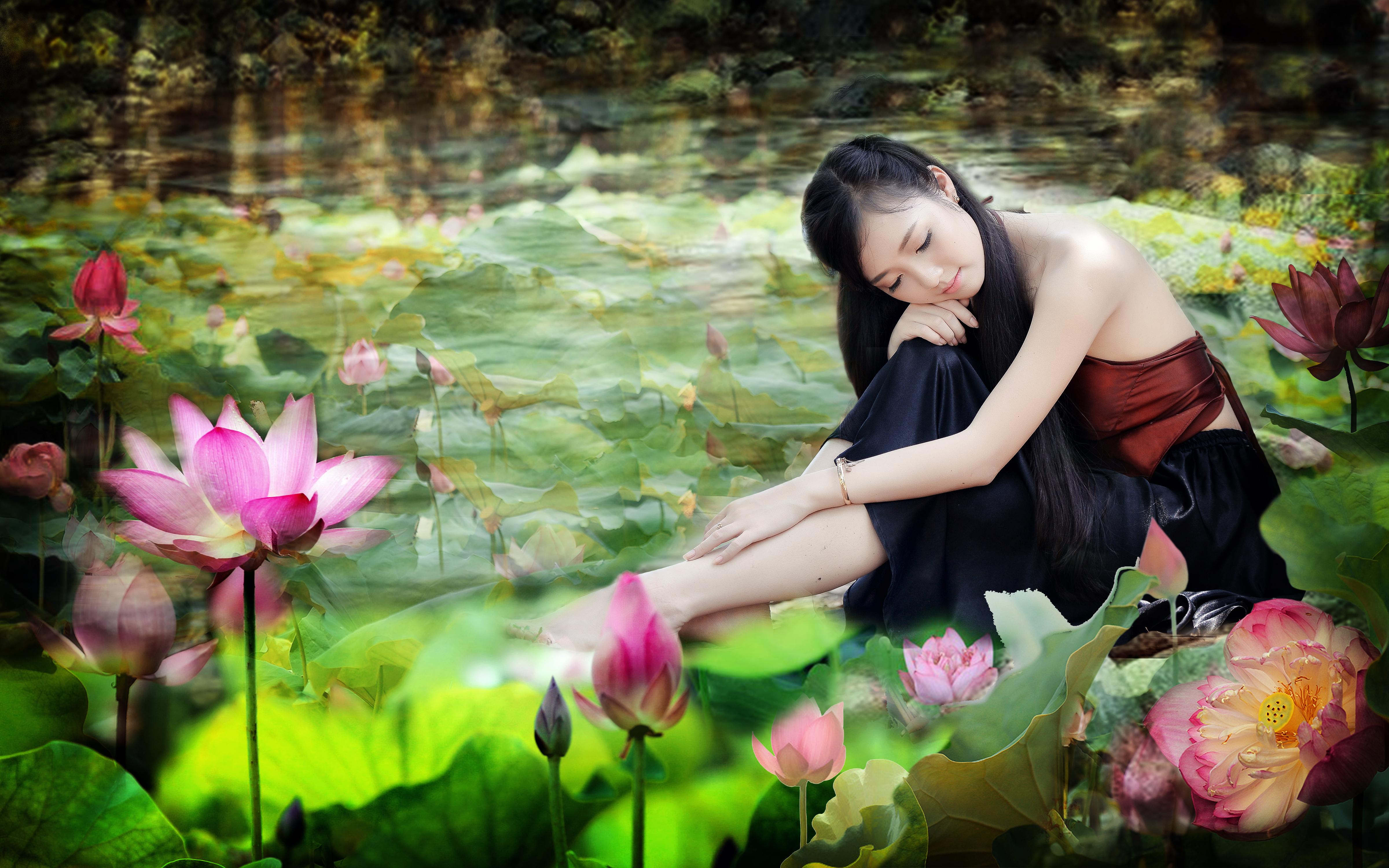 Legende Et Symbolisme De La Fleur De Lotus Ici Et Ailleurs